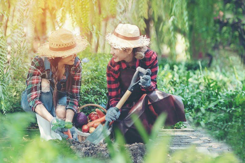 Manfaat Berkebun Bagi Tubuh